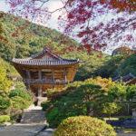 Choisir la bonne période pour voyager en Corée du Sud